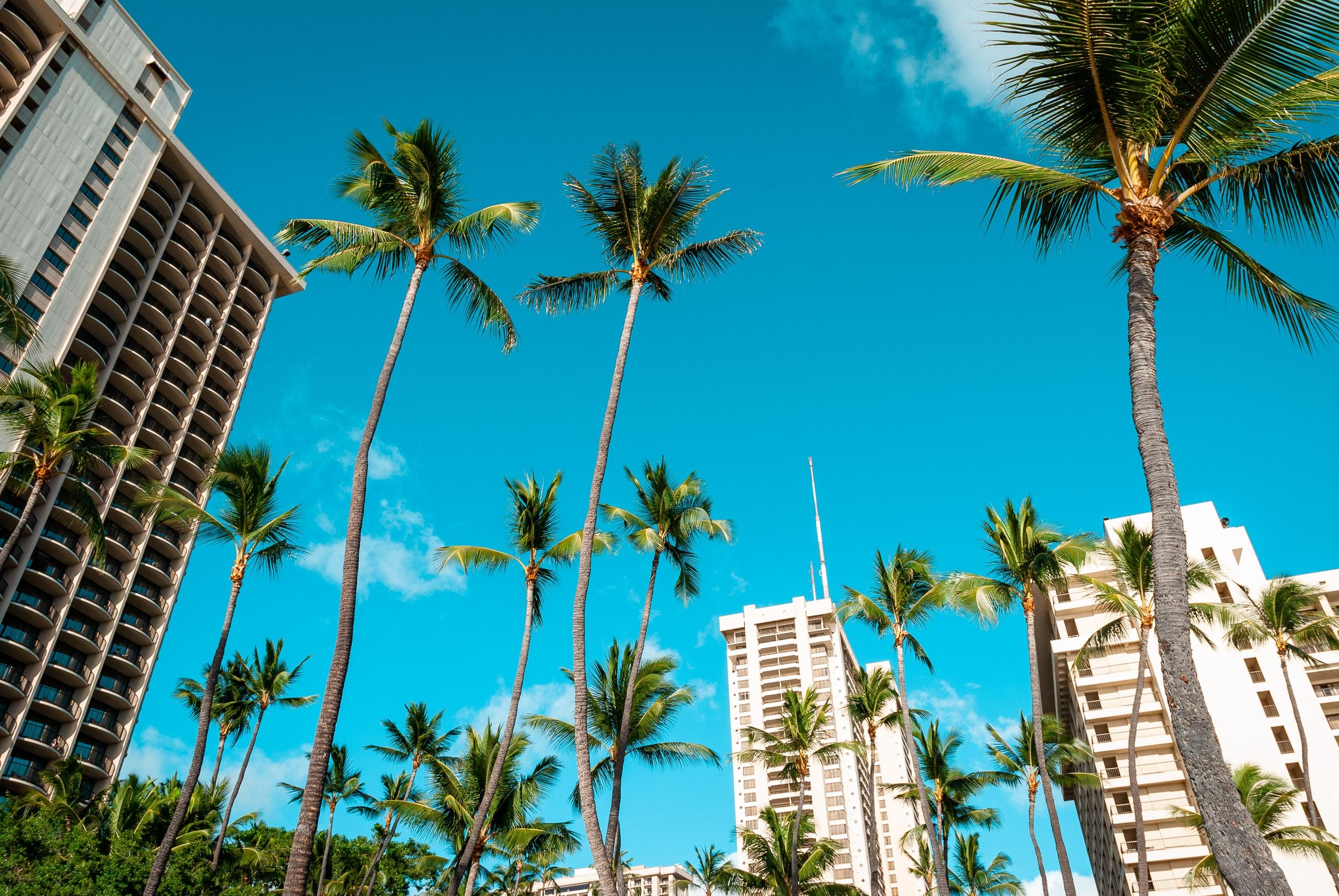The Hilton Hawaiian Village in Waikiki
