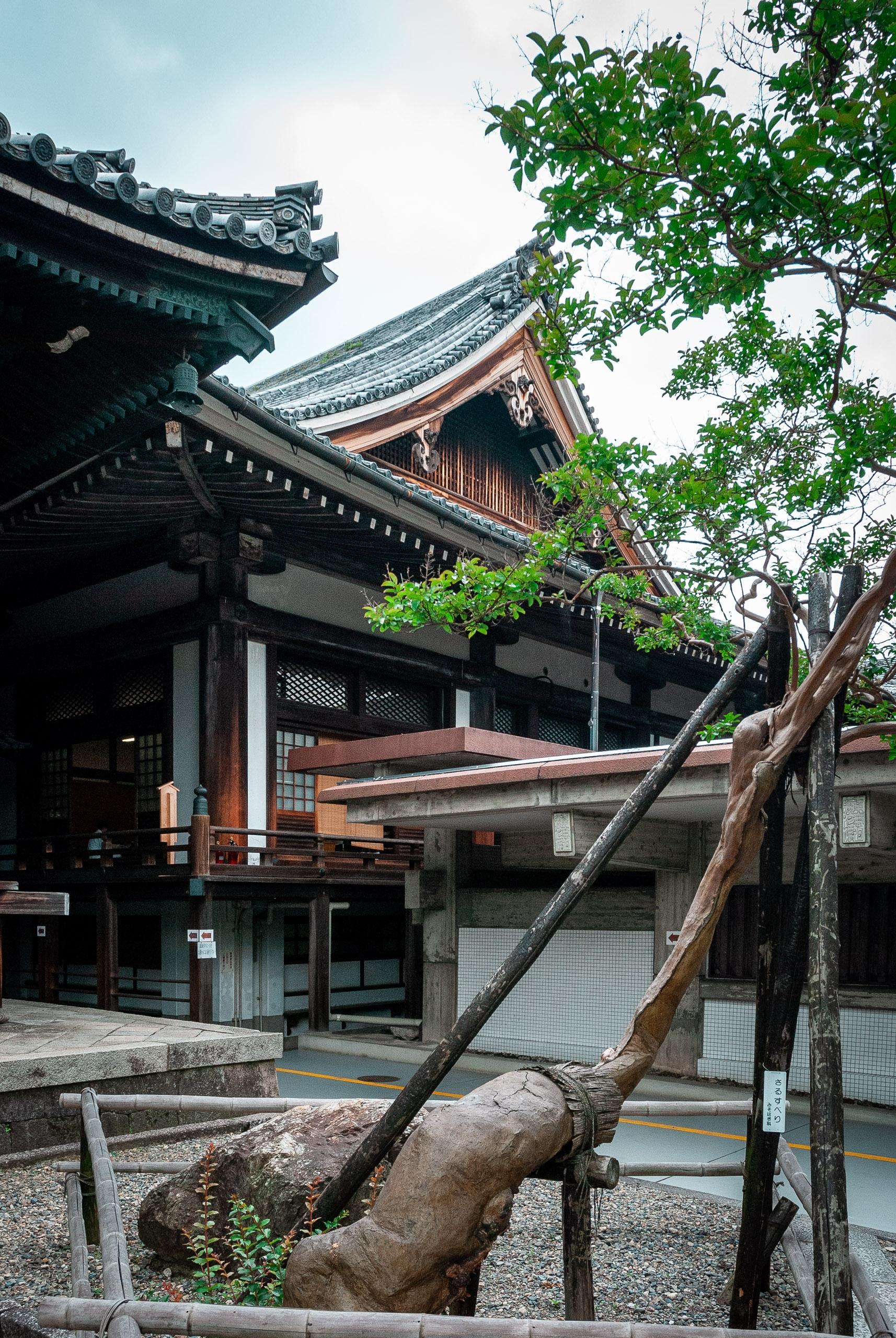 Japan - Kyoto - 2007-0612-DSC_0042_102567