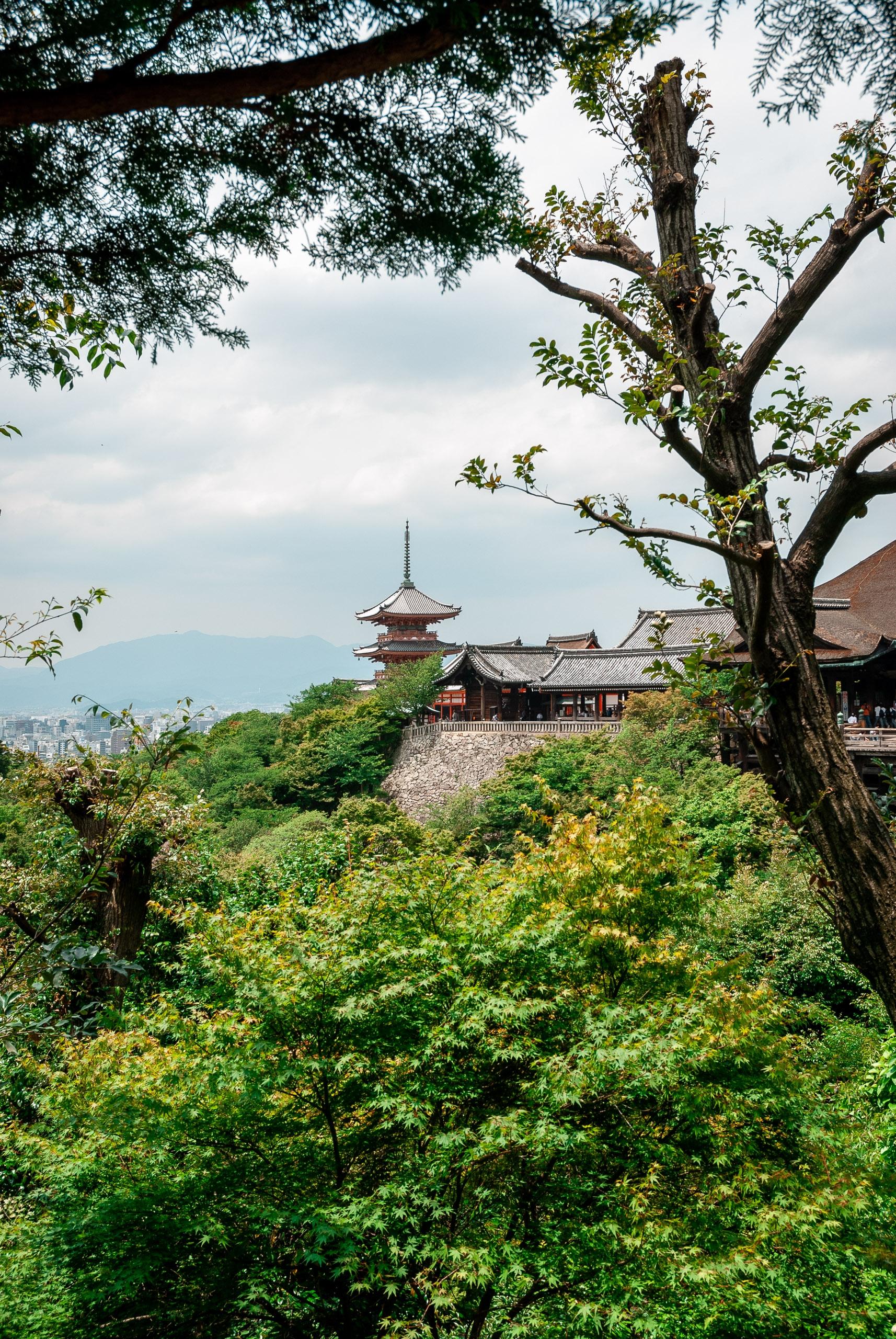 Japan - Kyoto - 2007-0612-DSC_0105_41102