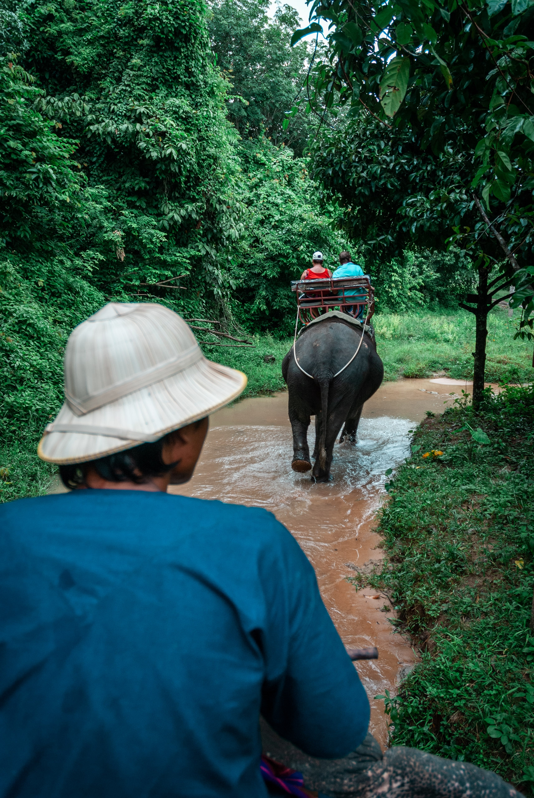 Riding an Elephant at the Elephant Reserve