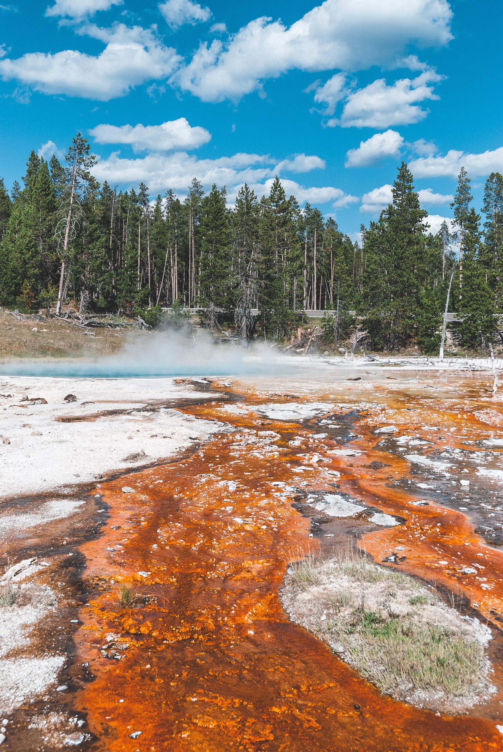 Yellowstone National Park - 2007-0827-DSC_0164_73018