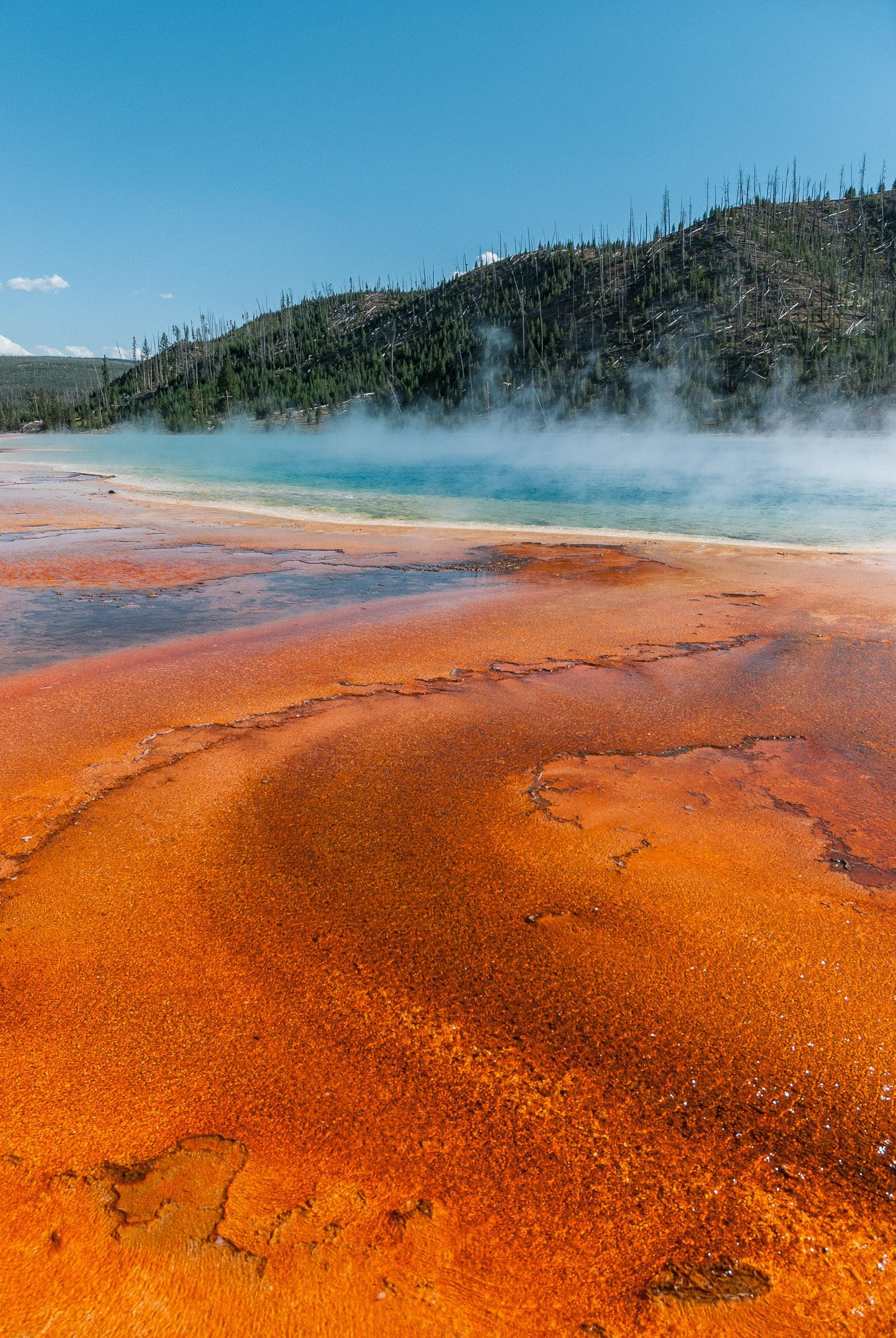 Yellowstone National Park - 2007-0827-DSC_0239_83320