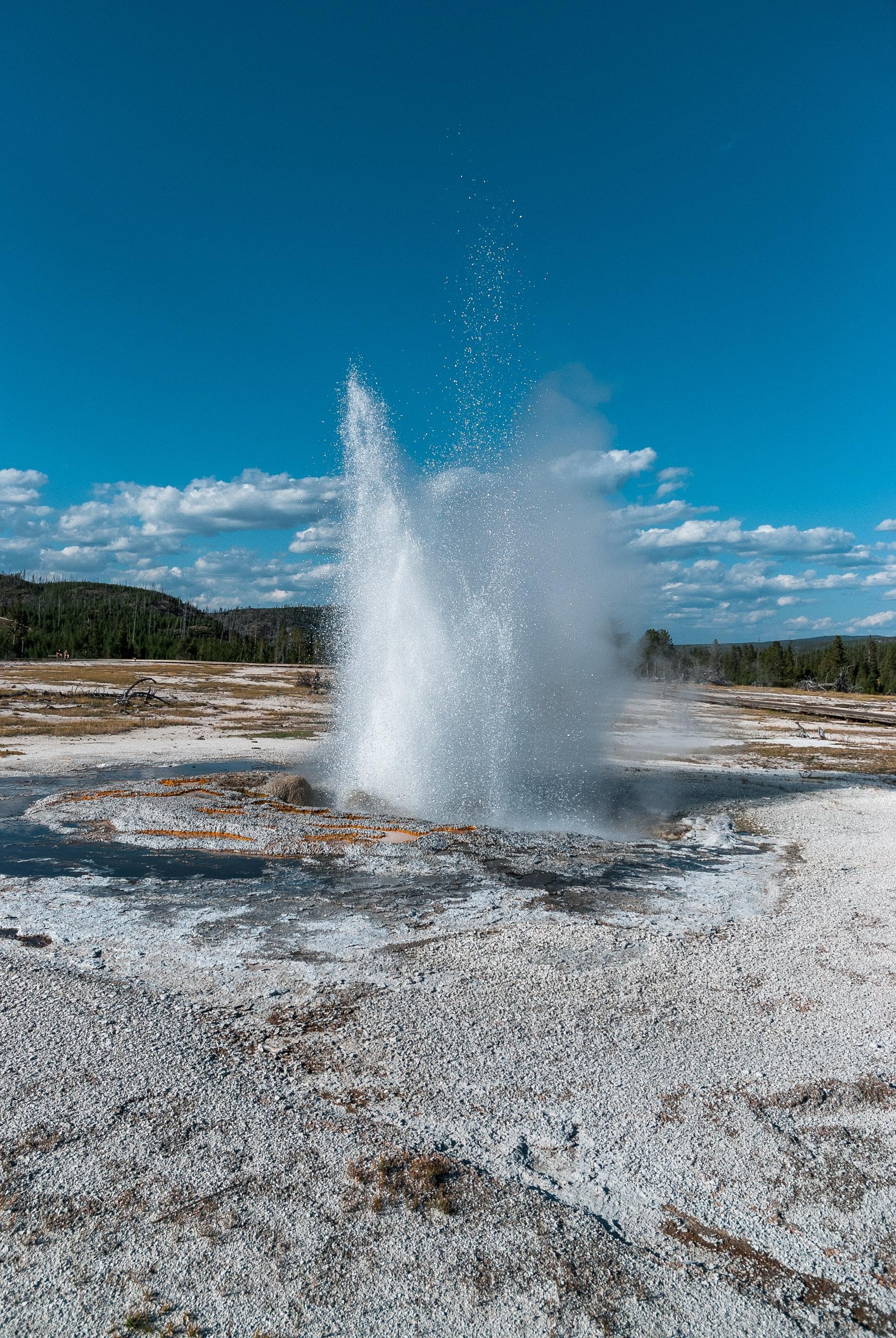 Yellowstone National Park - 2007-0827-DSC_0249_78178