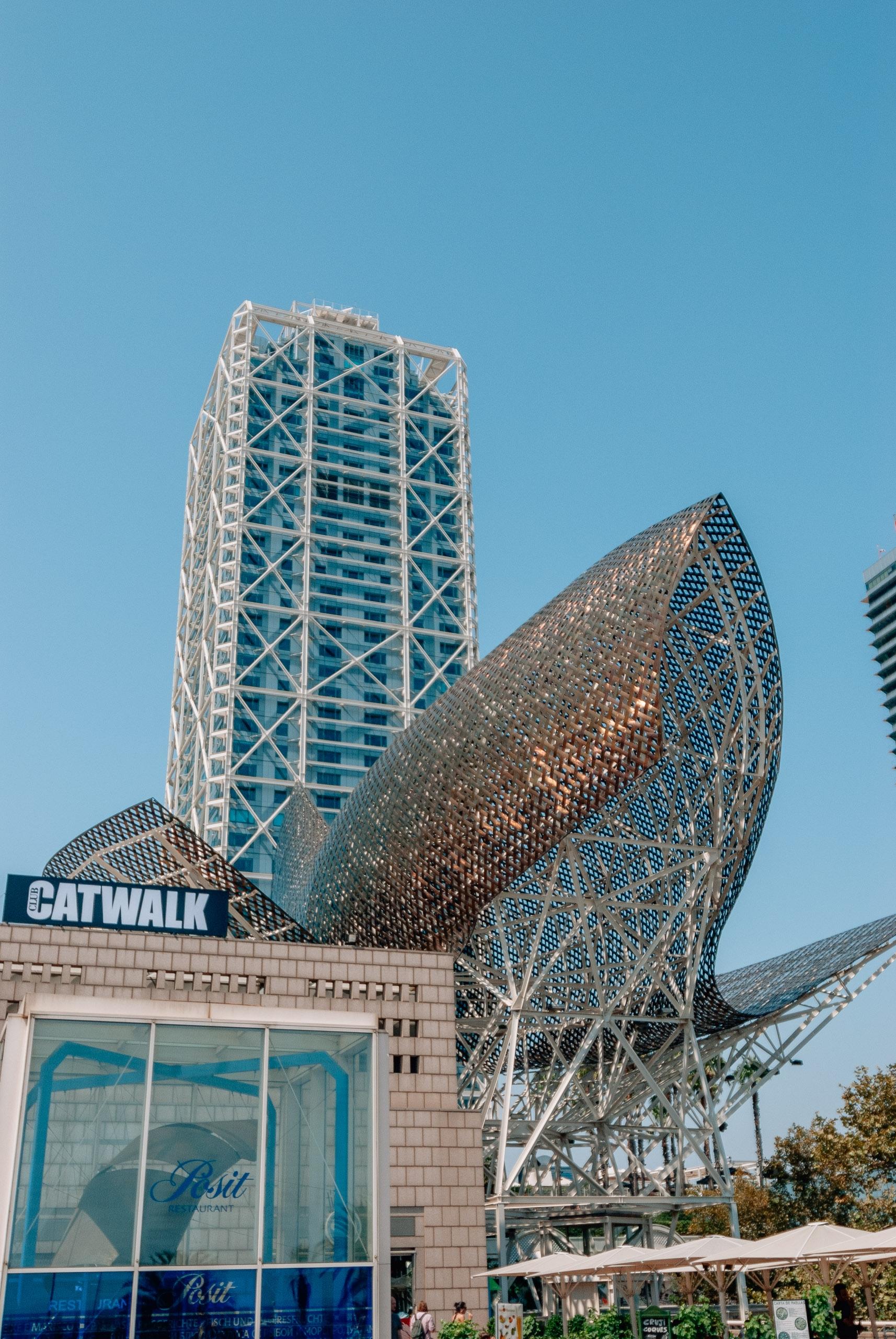 Spain - Barcelona - 2008-0827-DSC_0145_97103
