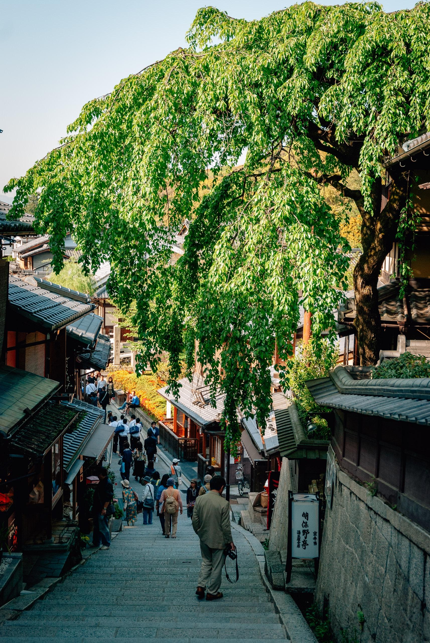 Japan - Tokyo Kyoto & Nikko - 2010-0426-DSC_0083_98700