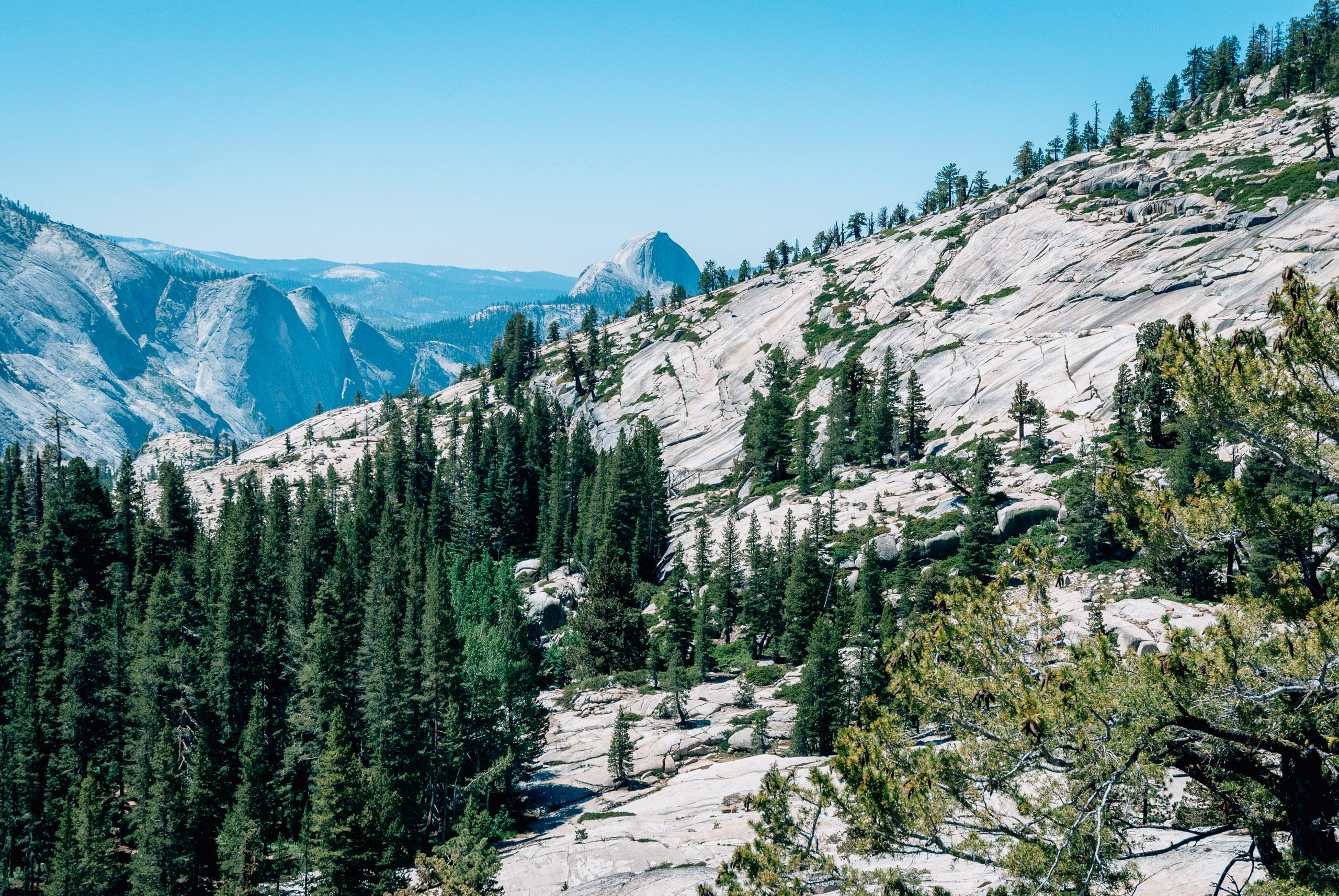 Yosemite National Park - 2010-0723-DSC_0072_103094
