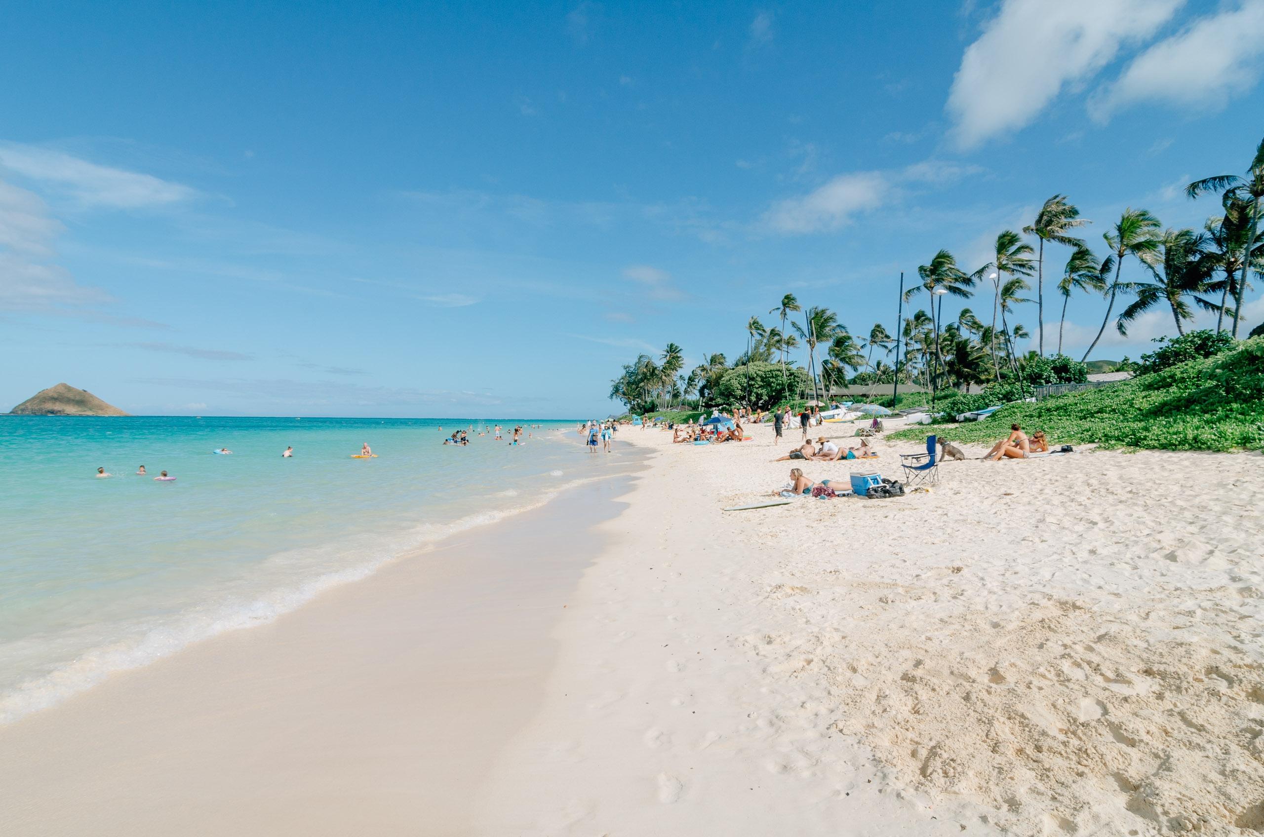 Hawaii - Oahu - 2011-0422-christmas034