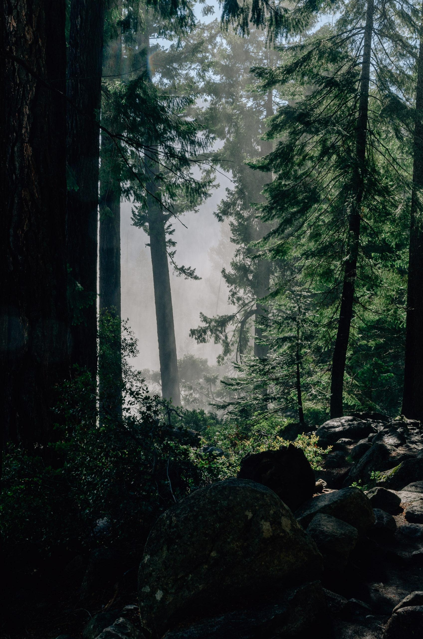 Yosemite National Park - 2011-0709-KPK_8563