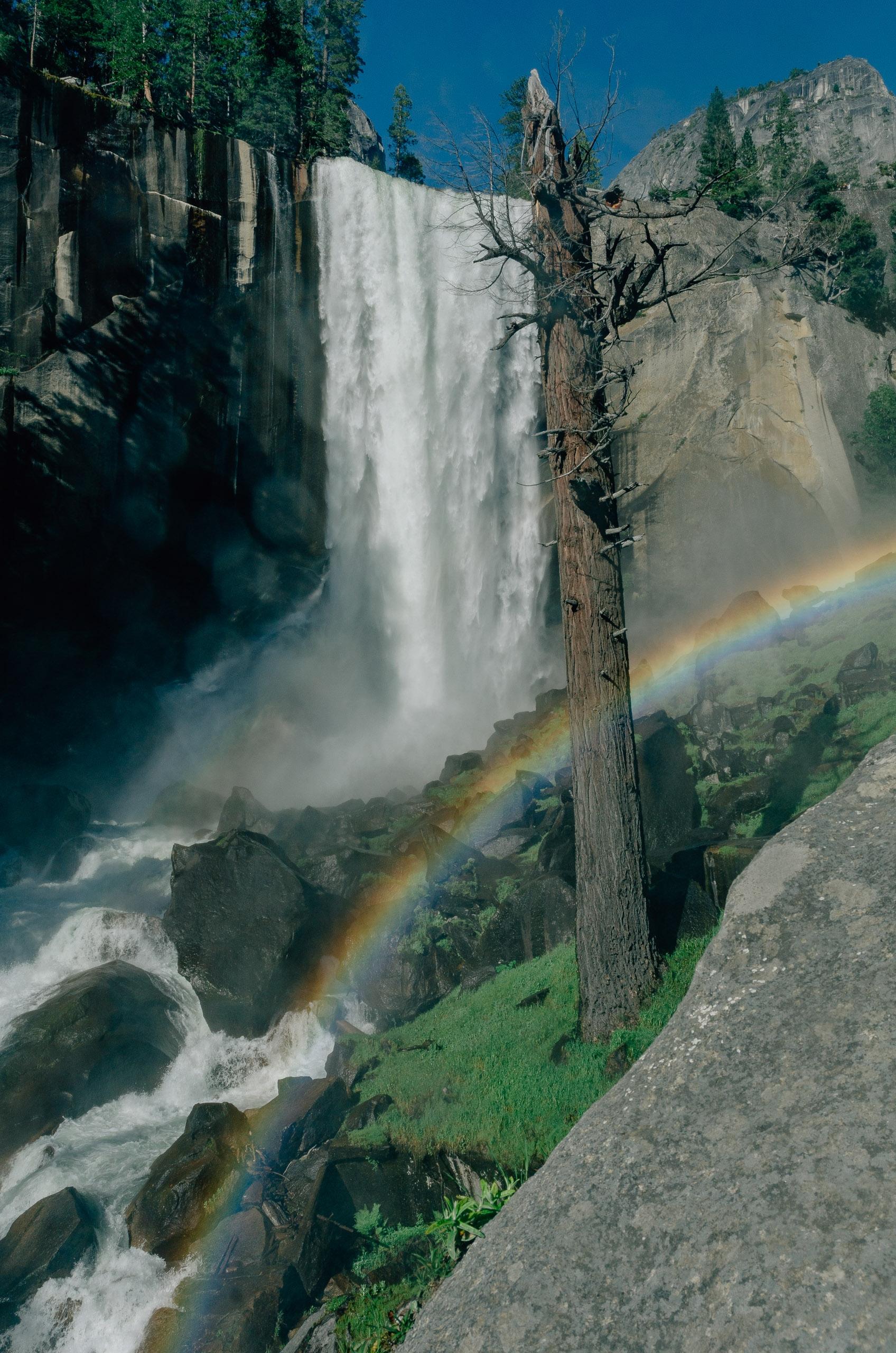 Yosemite National Park - 2011-0709-KPK_8594