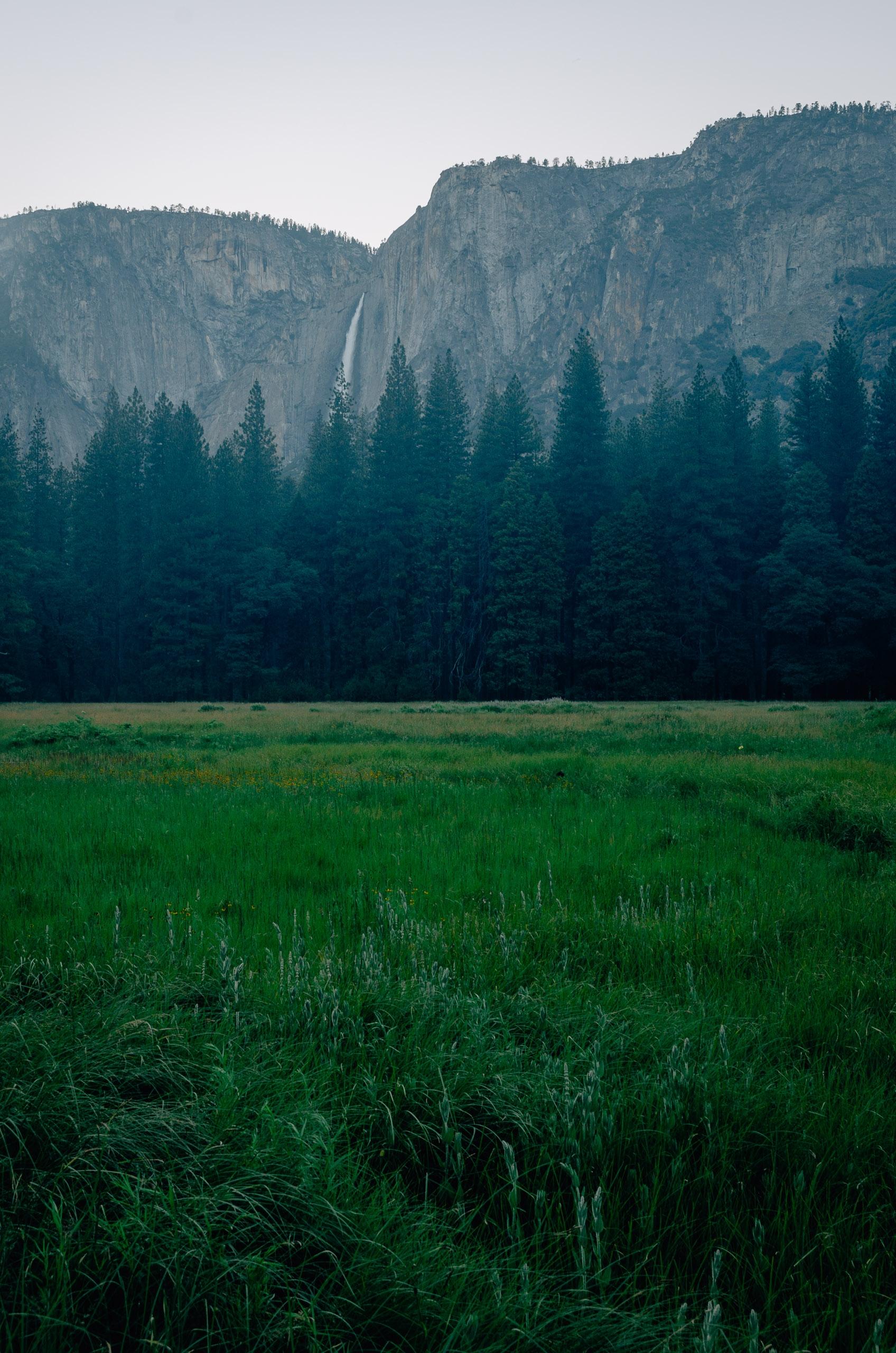 Yosemite National Park - 2011-0709-KPK_8624