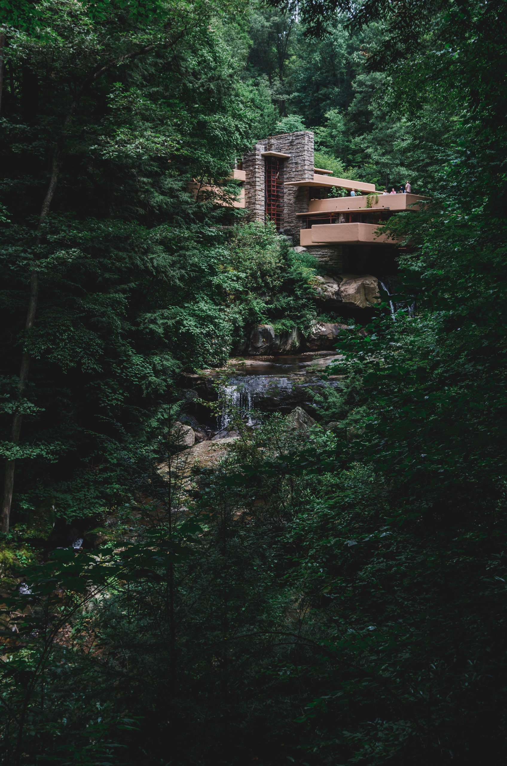 The View of Fallingwater - Part II