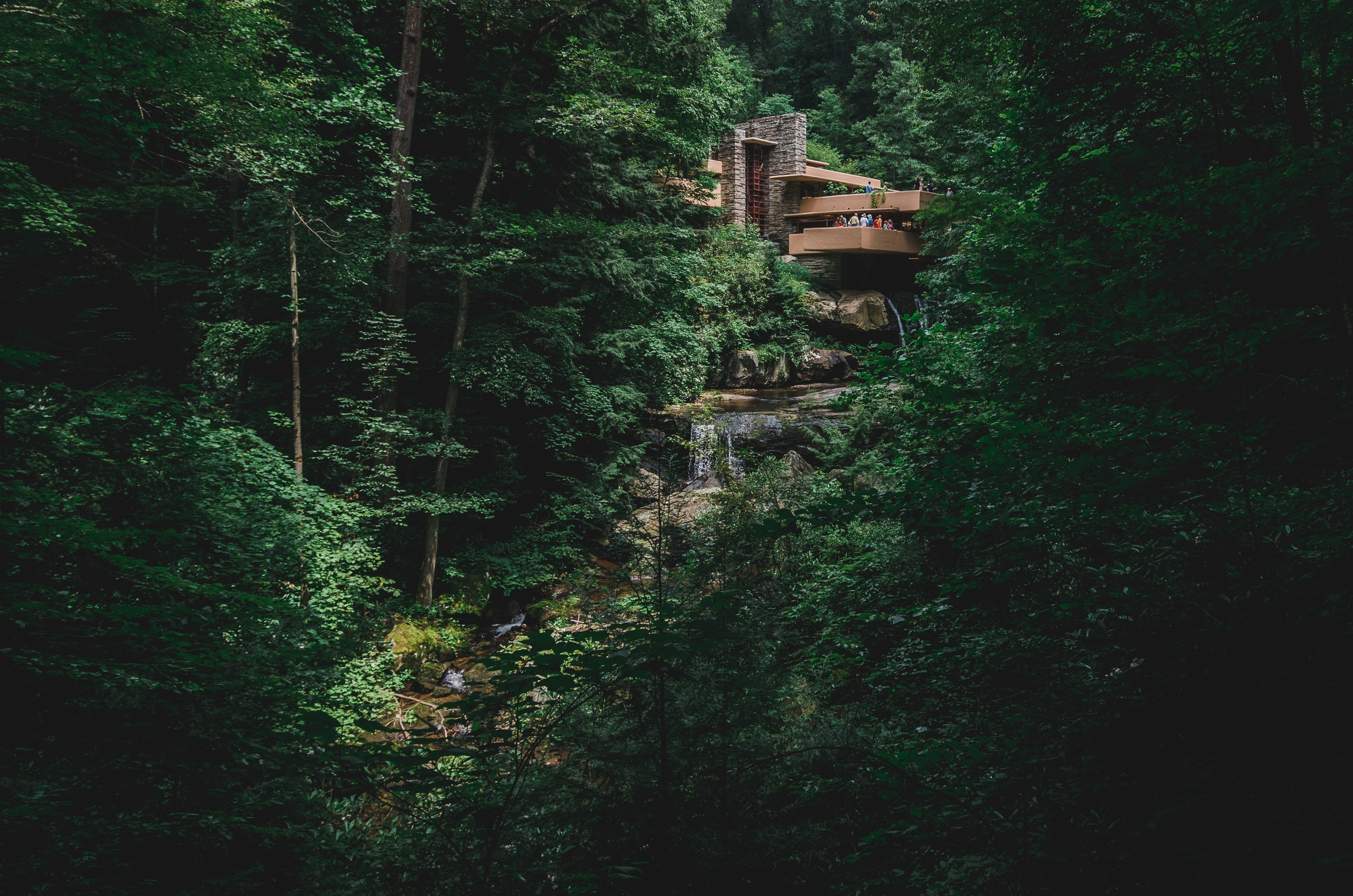 The View of Fallingwater - Wide Part II