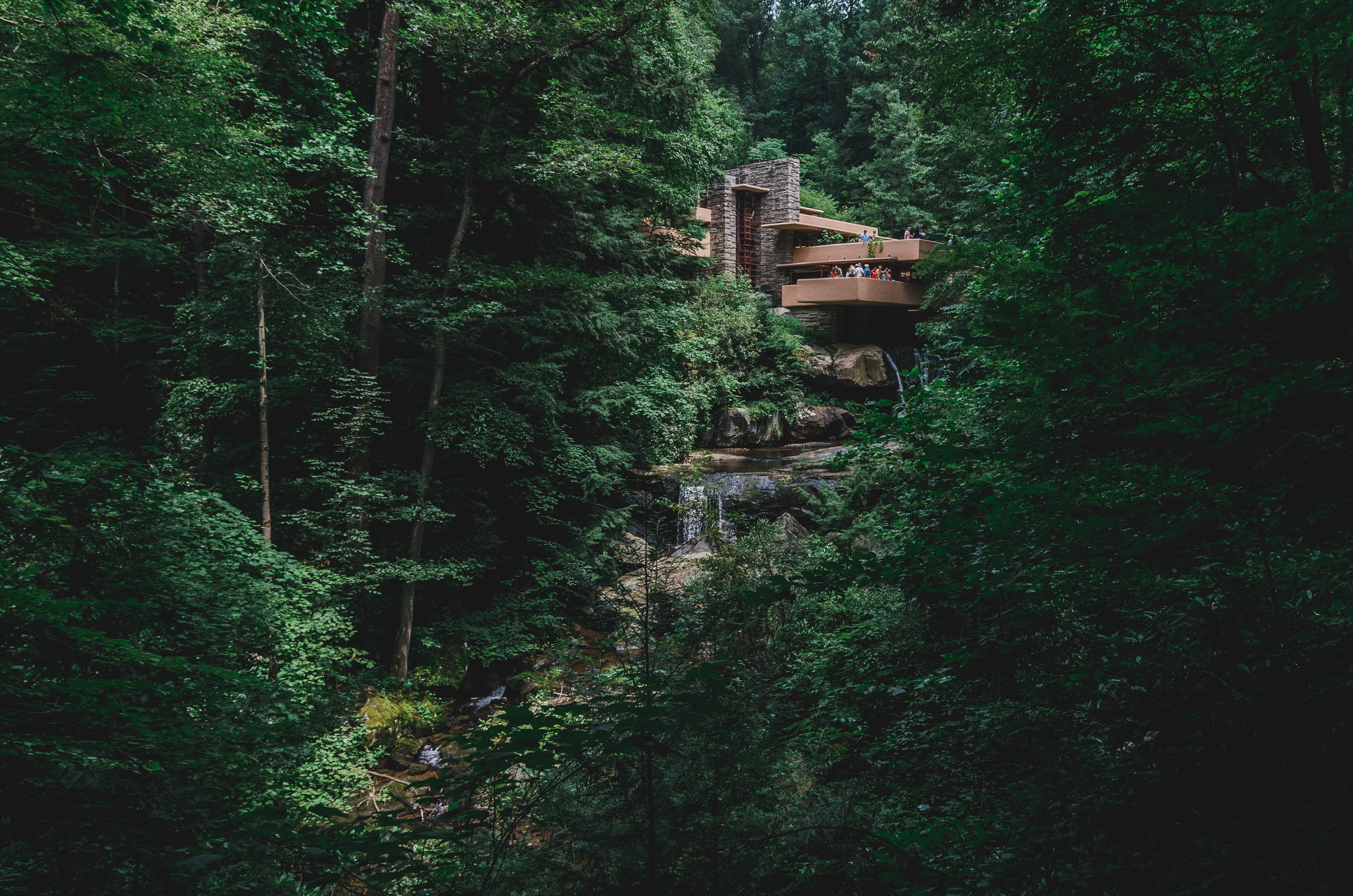 The View of Fallingwater - Wide
