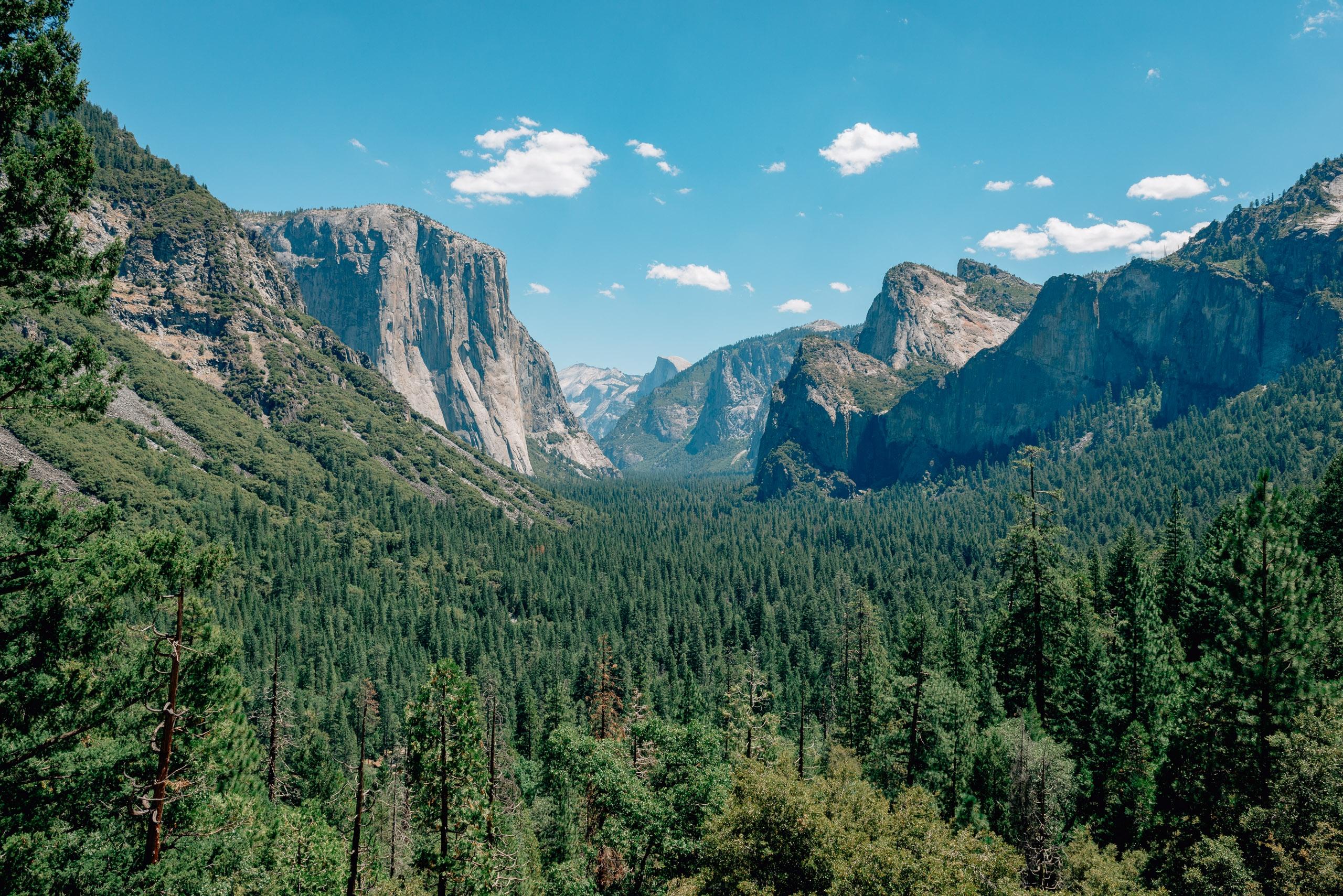 Yosemite National Park - 2012 - 2012-0721-DSC_0099