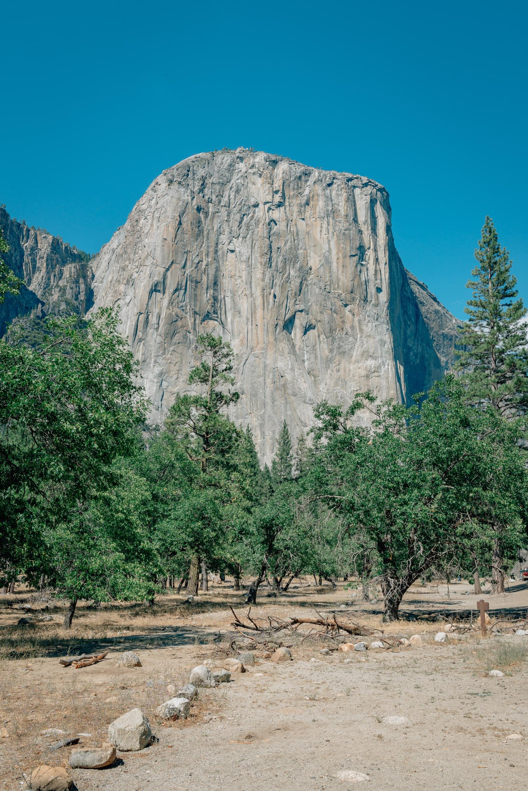 Yosemite National Park - 2012 - 2012-0721-DSC_0213_70050
