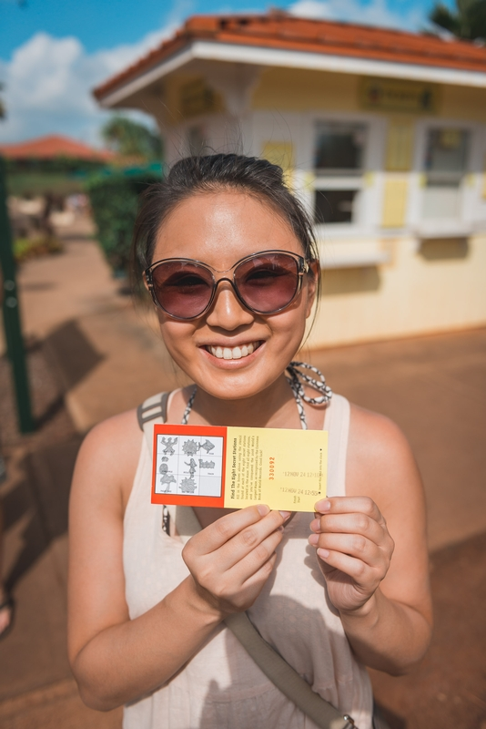 Jessica and her Ticket to the Pineapple Maze