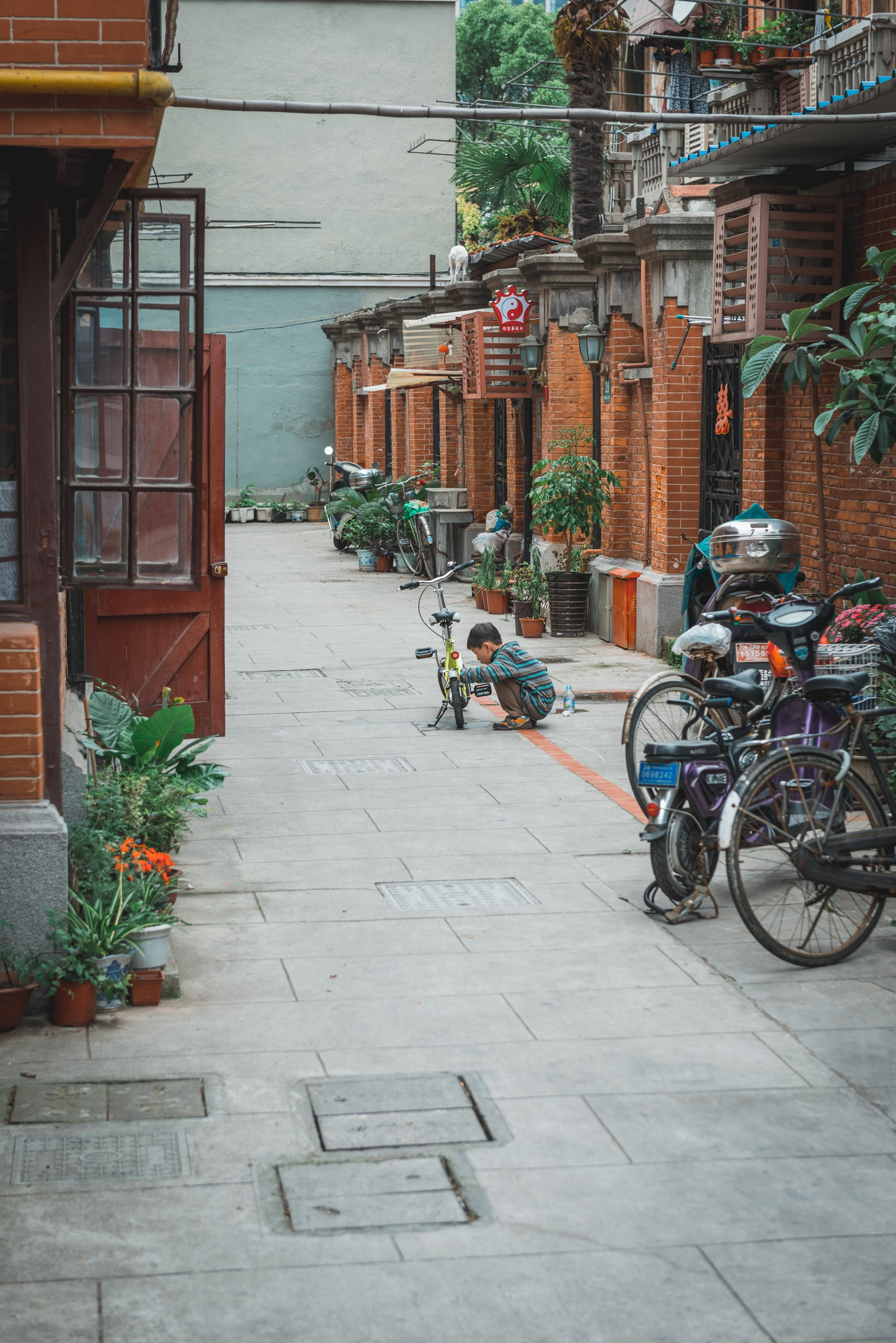 36 Hours in Shanghai - 2013-0526-KPK_4325