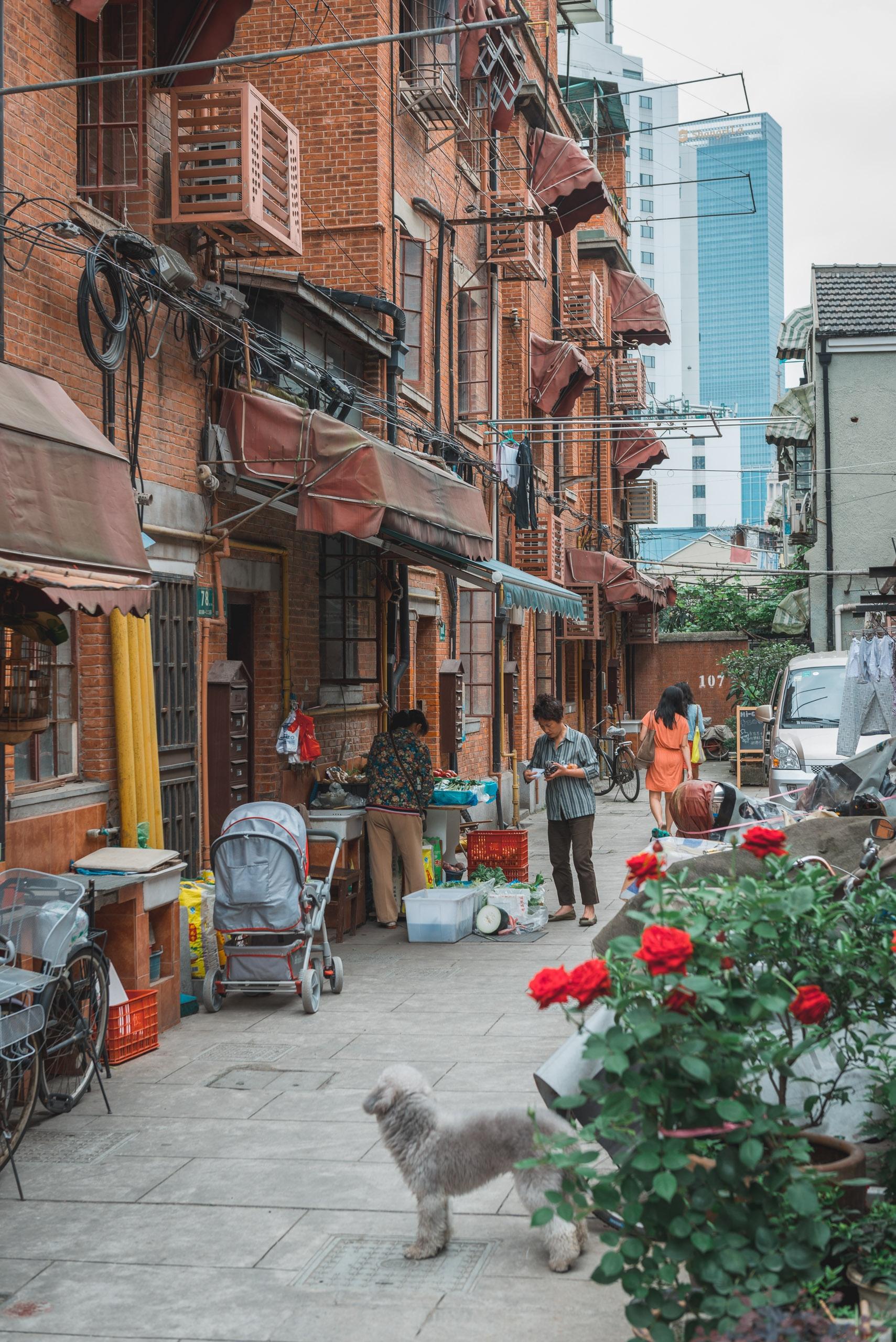 36 Hours in Shanghai - 2013-0526-KPK_4328