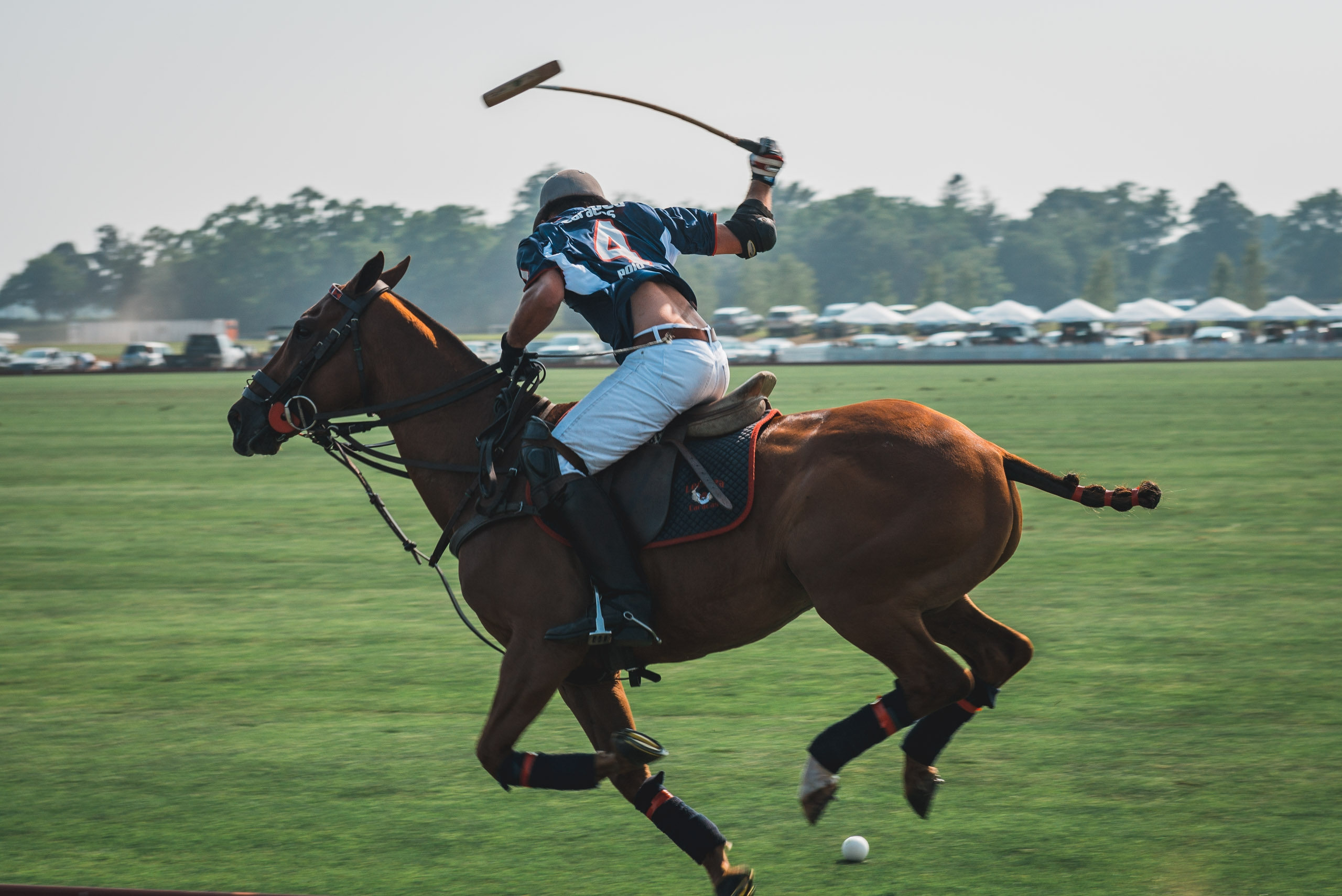 Polo at Full Speed