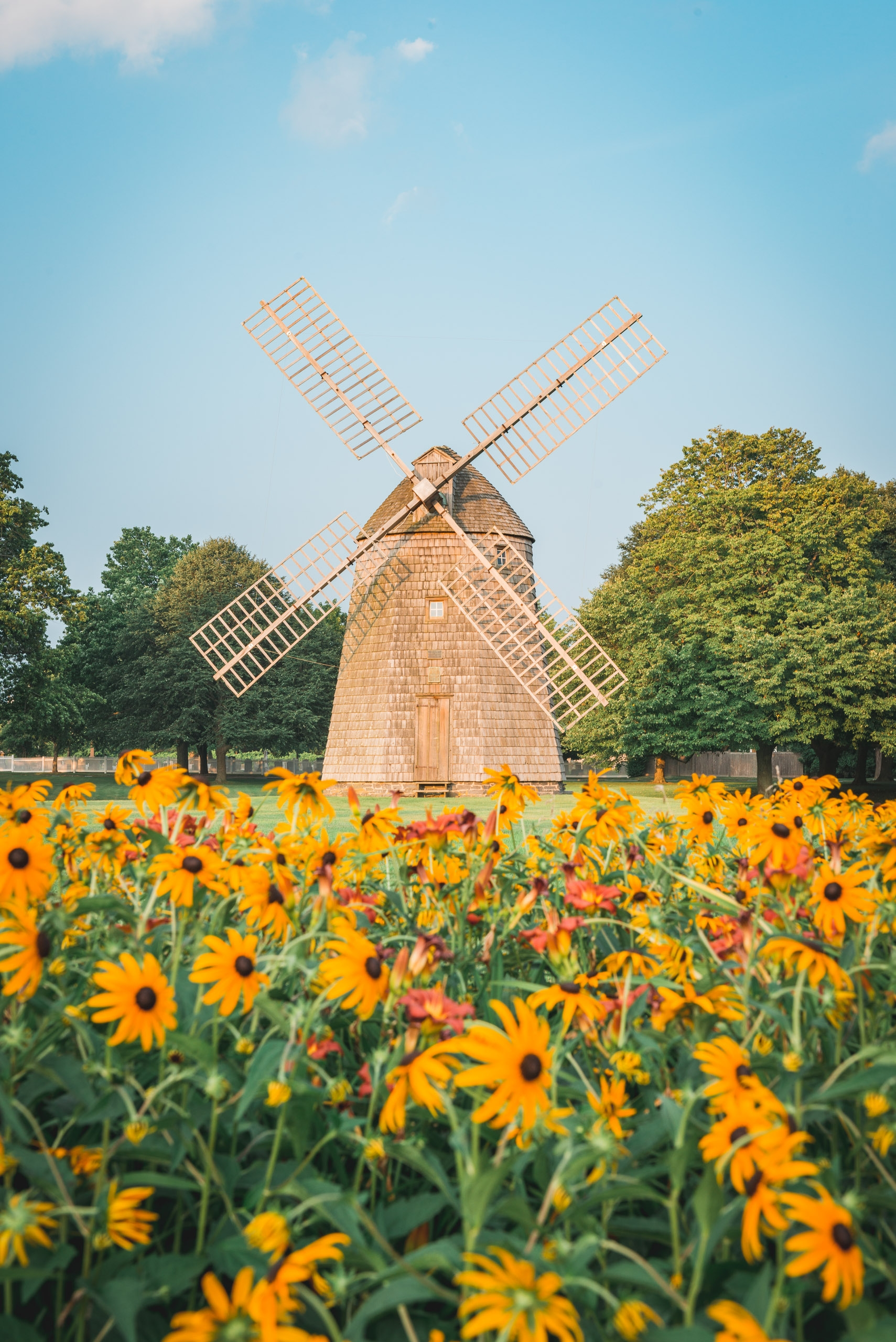 The Windmill and the Flowers