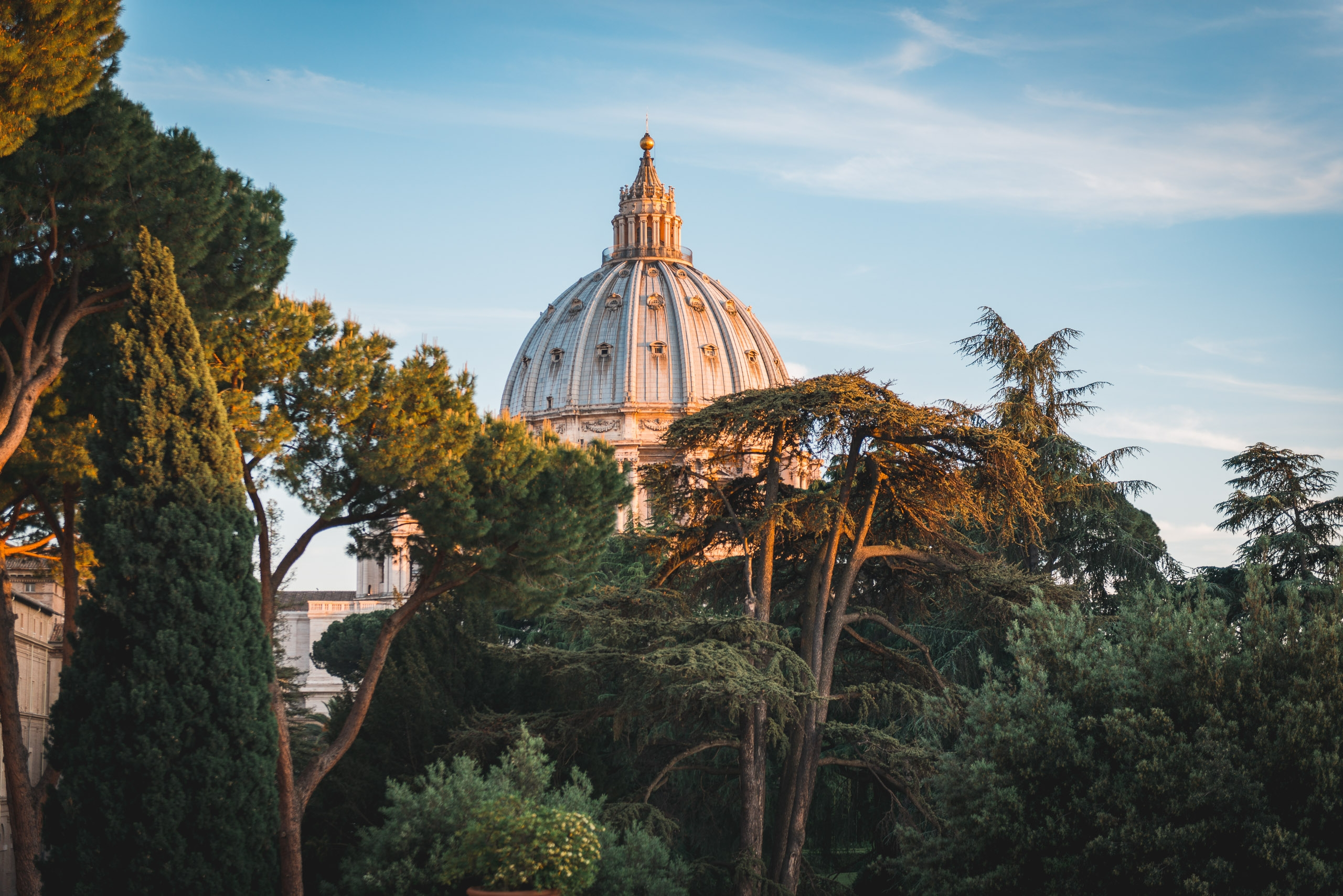 The Dome of St Peters Basilica