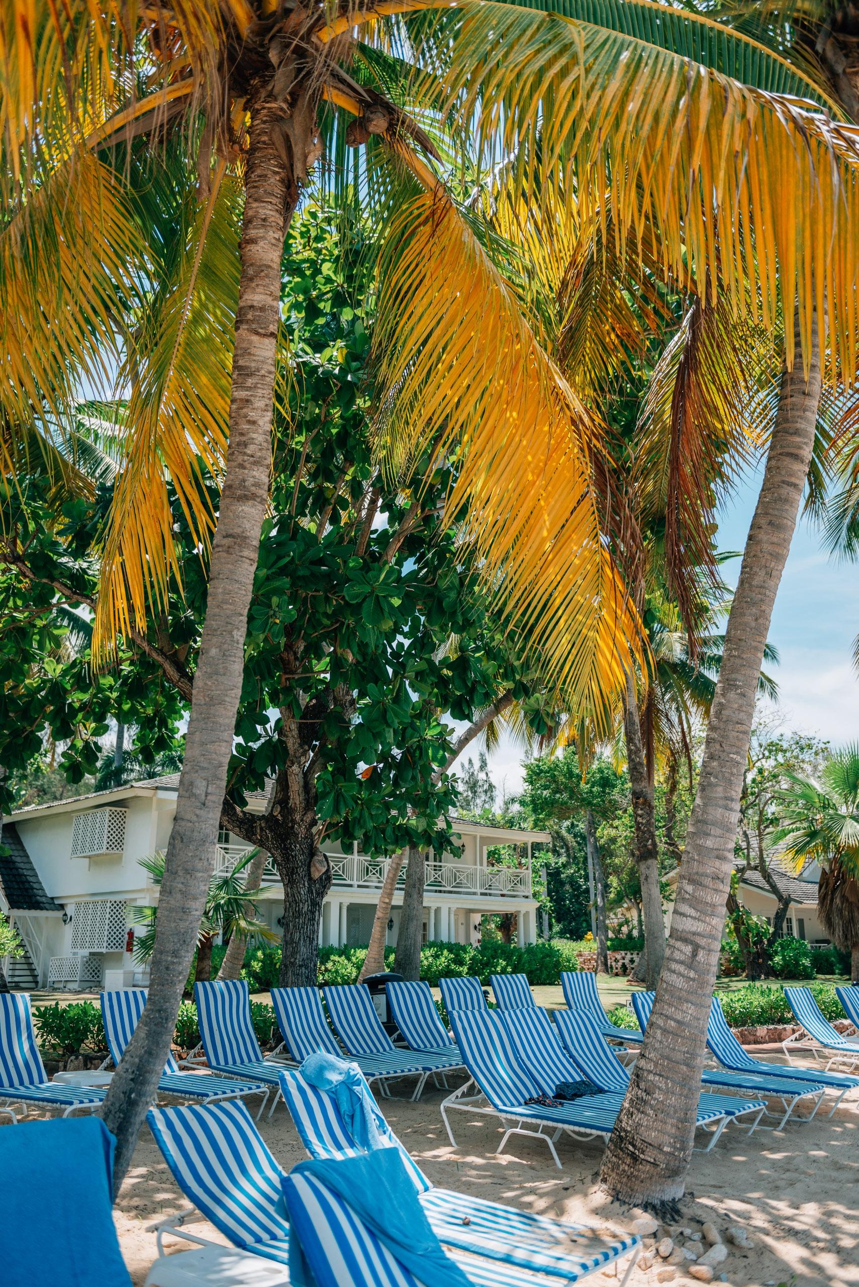 Beach Chairs Await