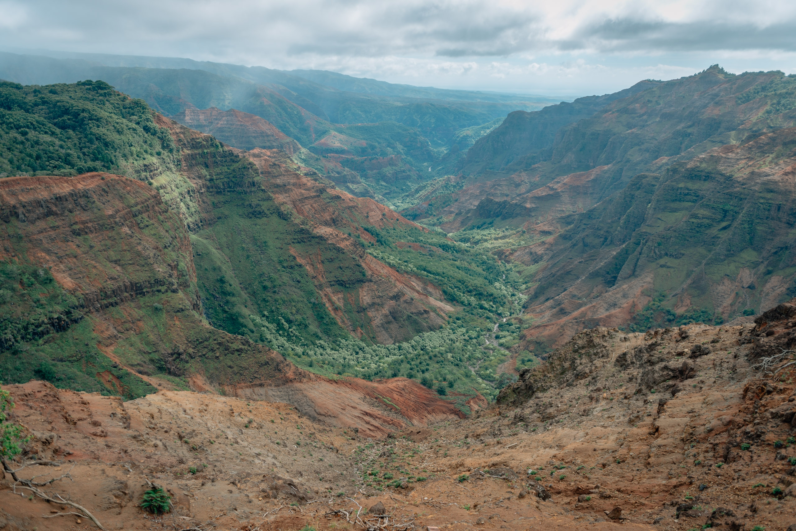 Overlooking Waimea Canyon 10