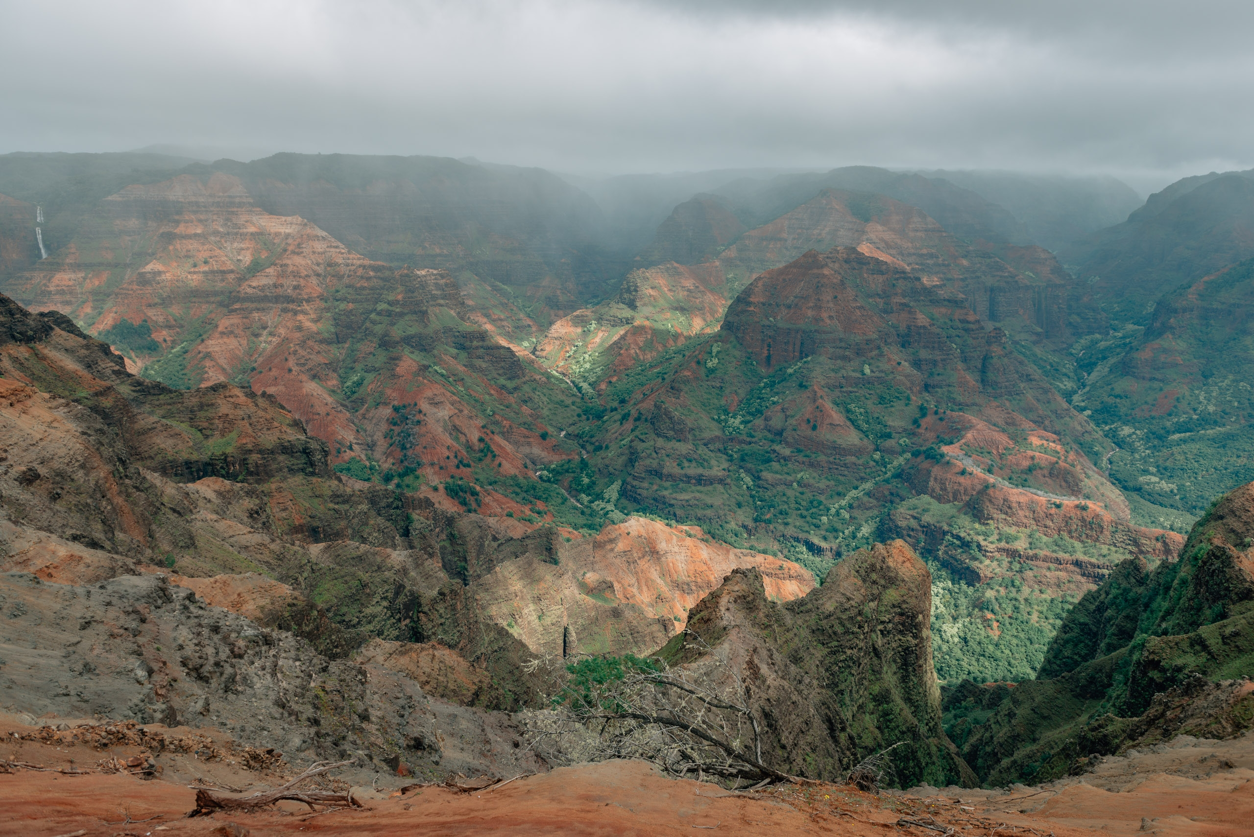 Overlooking Waimea Canyon 2