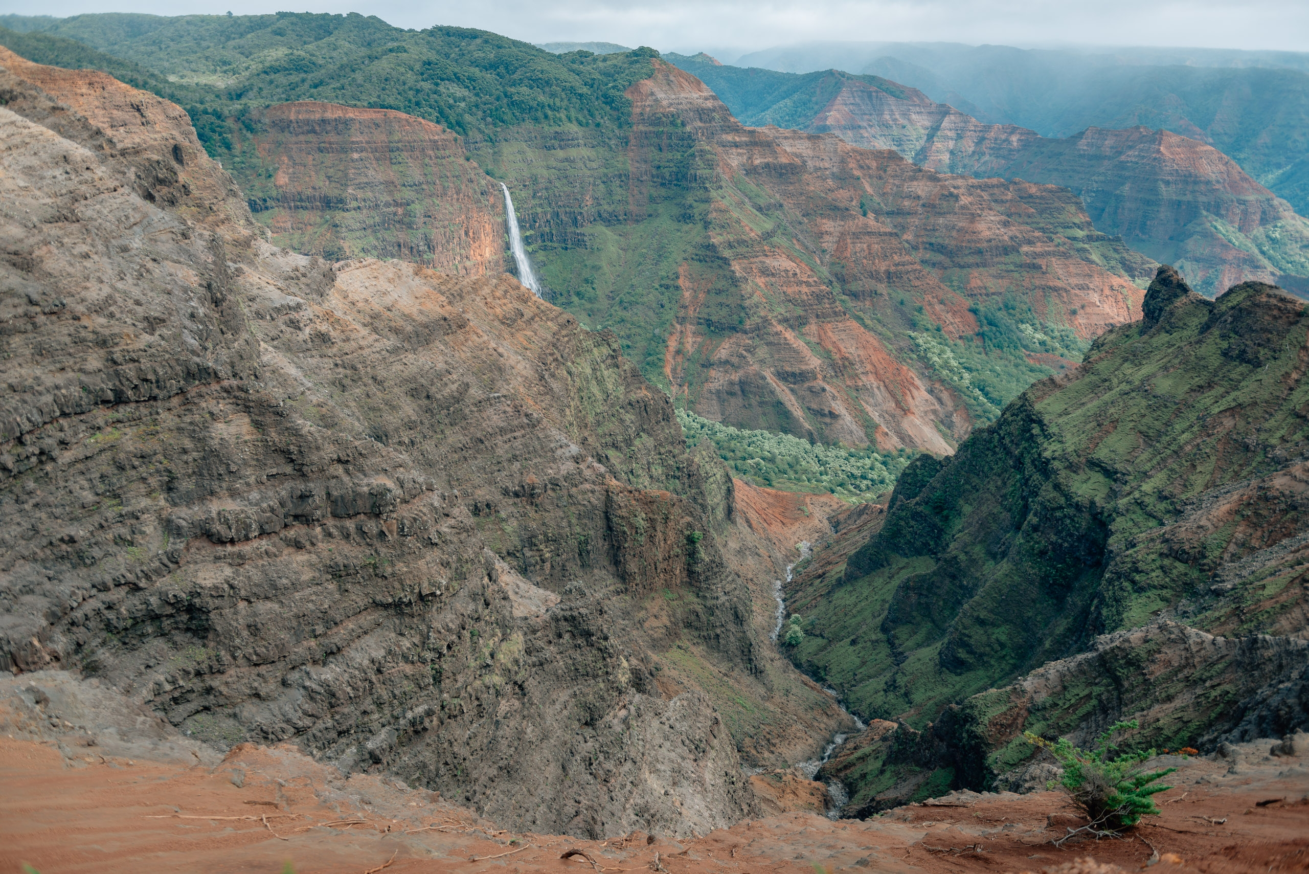 Overlooking Waimea Canyon 3
