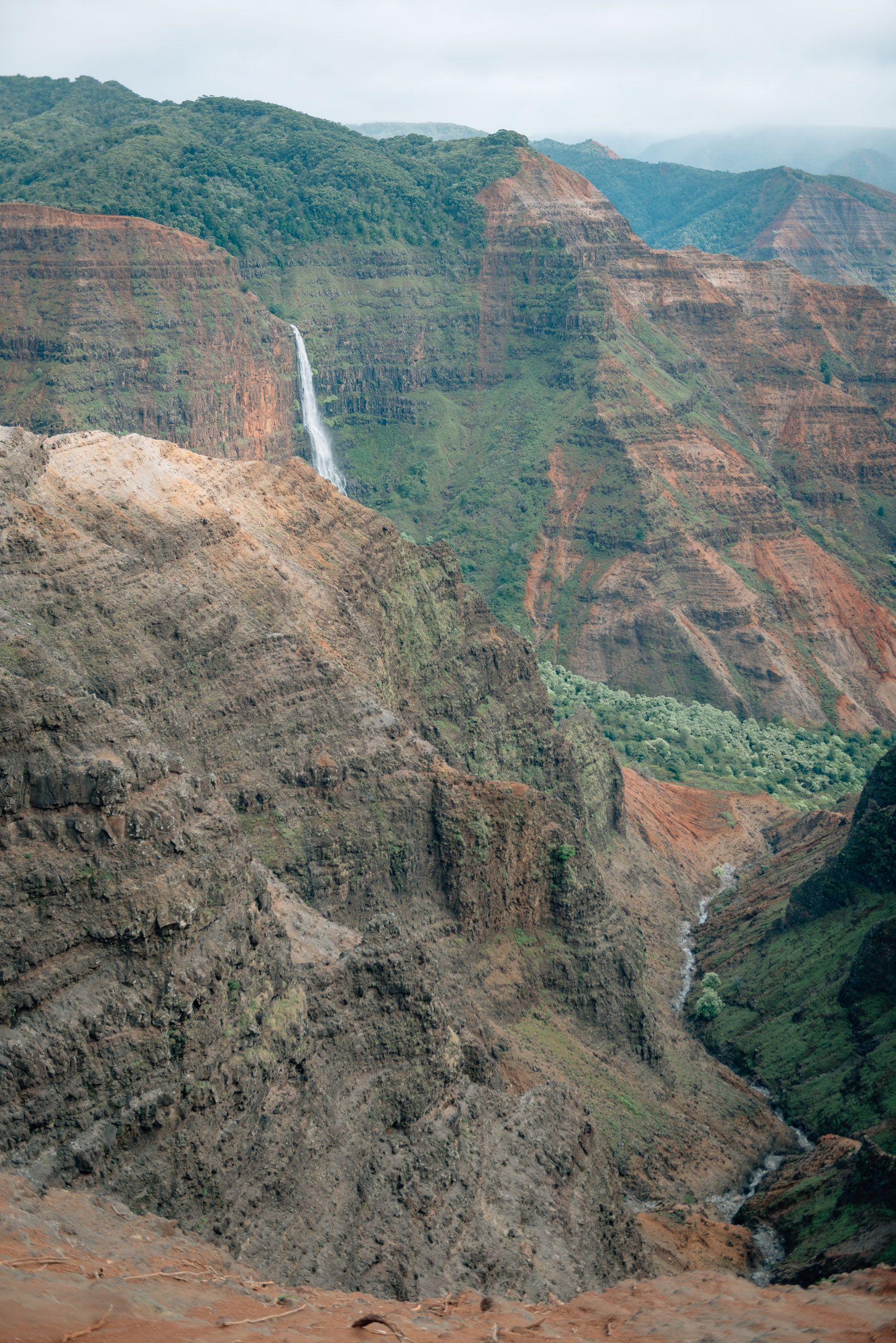Overlooking Waimea Canyon 4