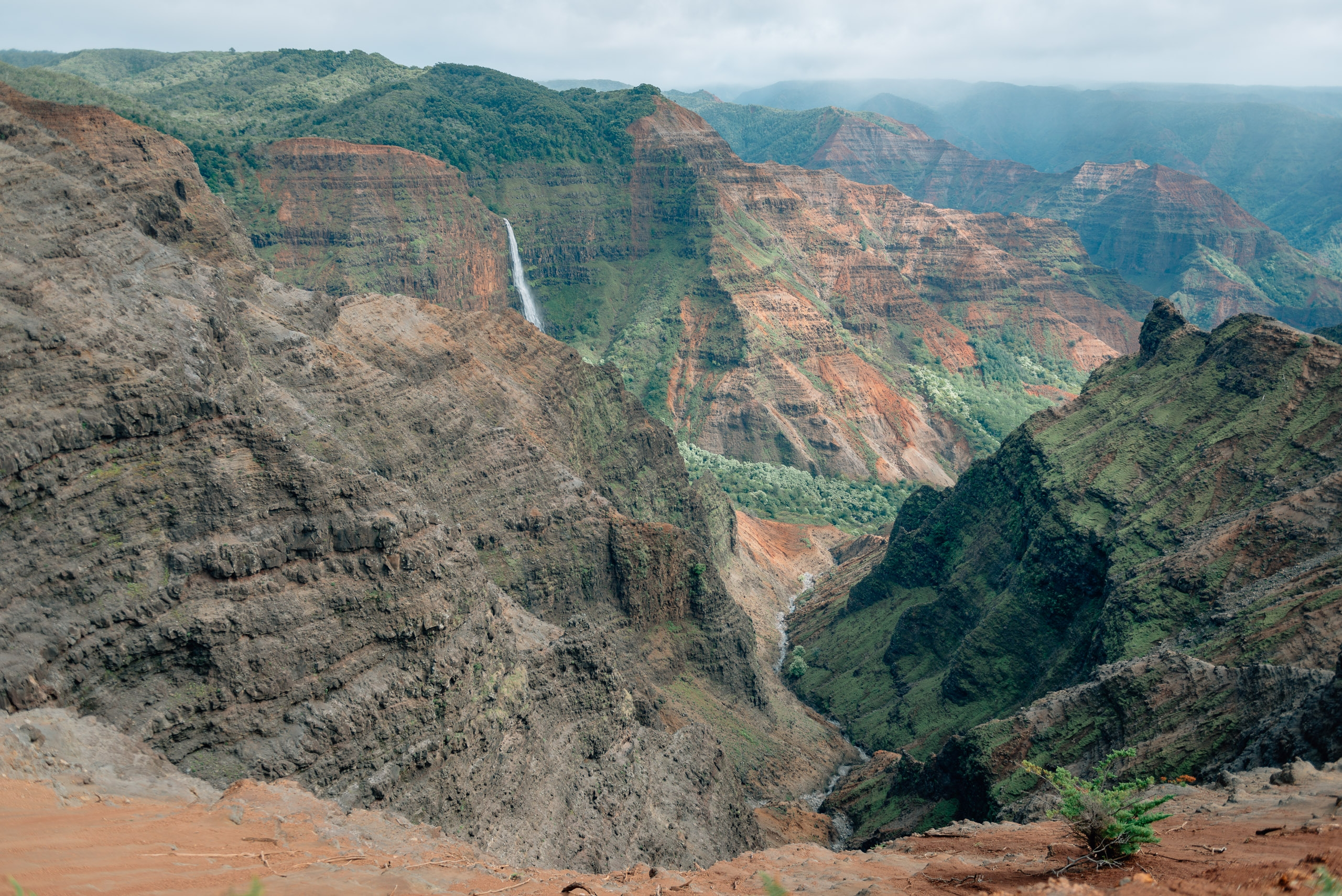 Overlooking Waimea Canyon 5