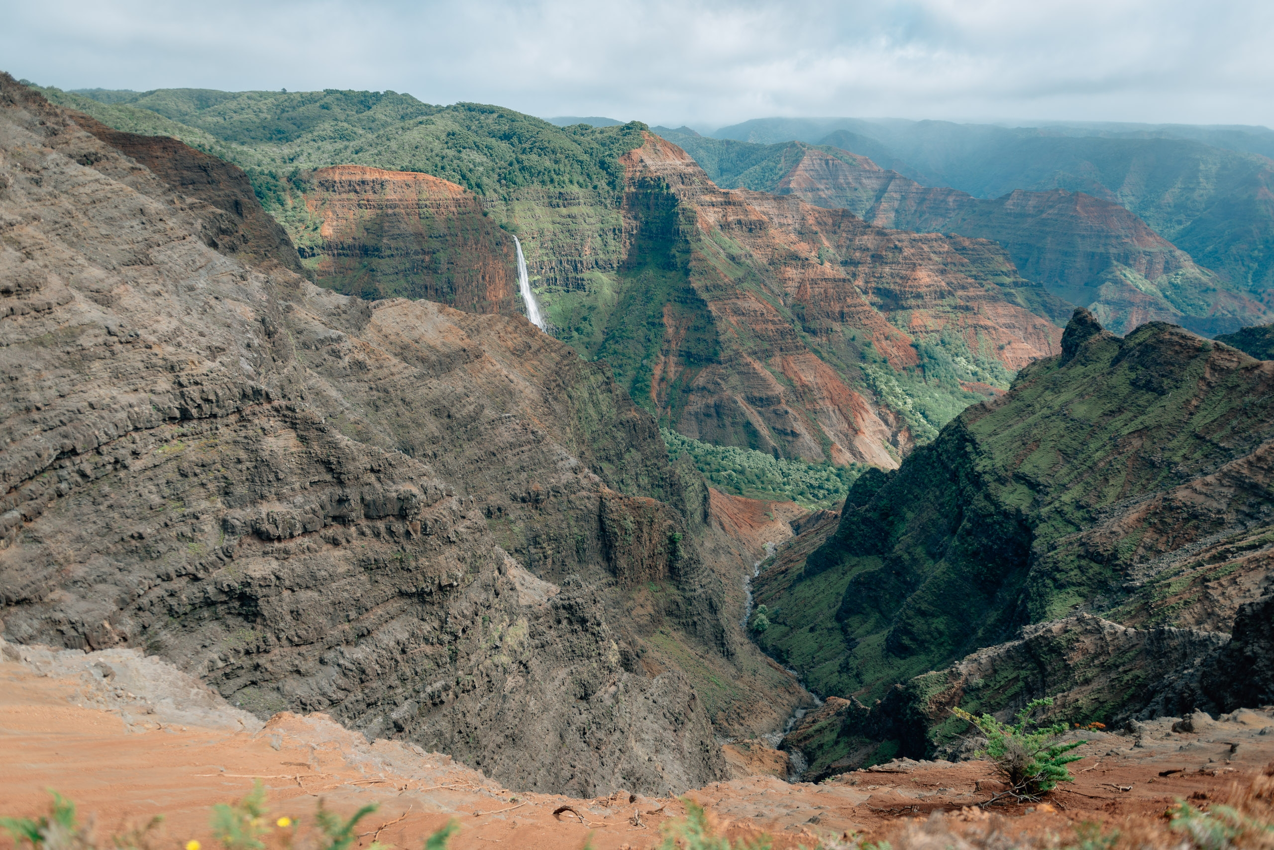 Overlooking Waimea Canyon 6