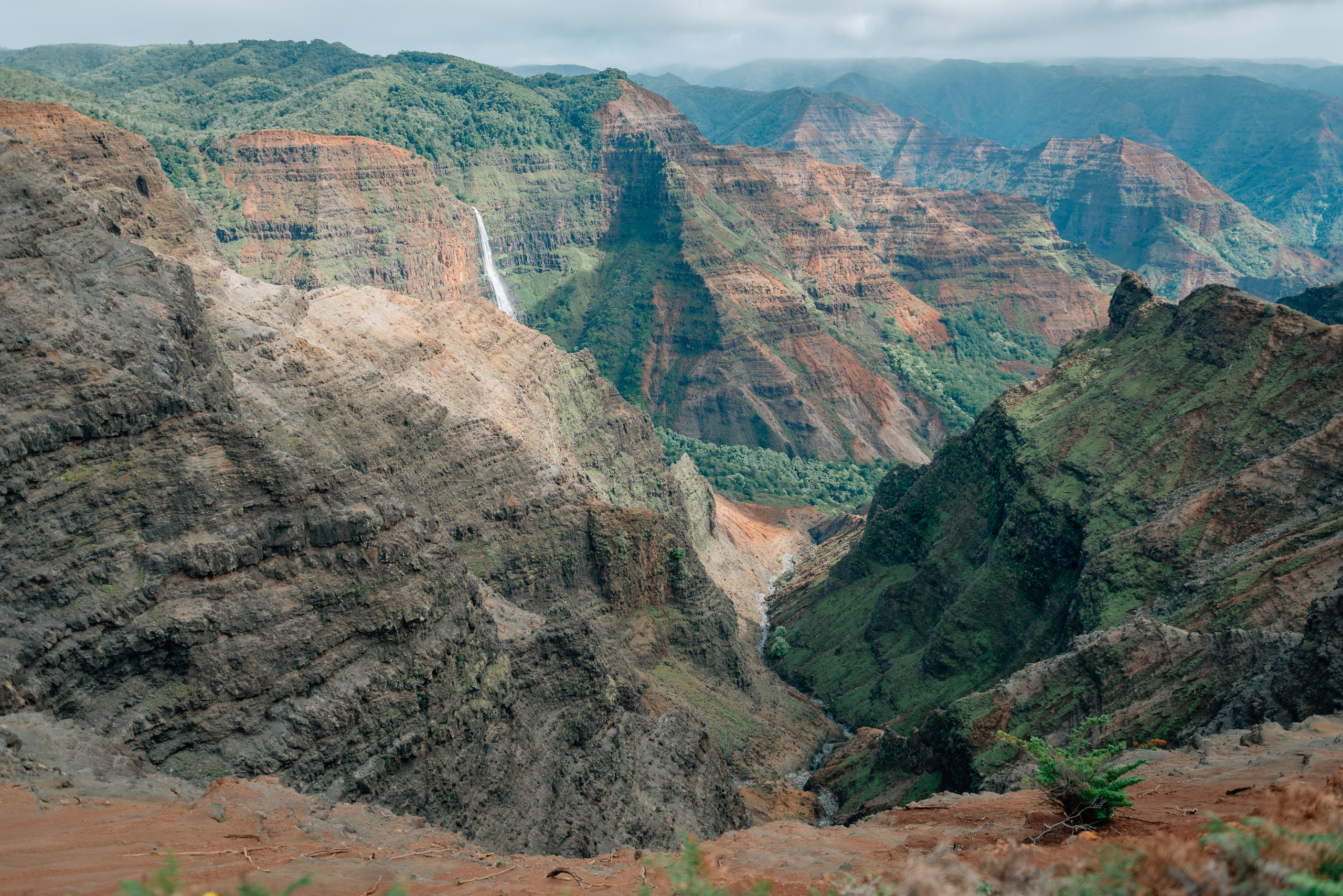 Overlooking Waimea Canyon 9