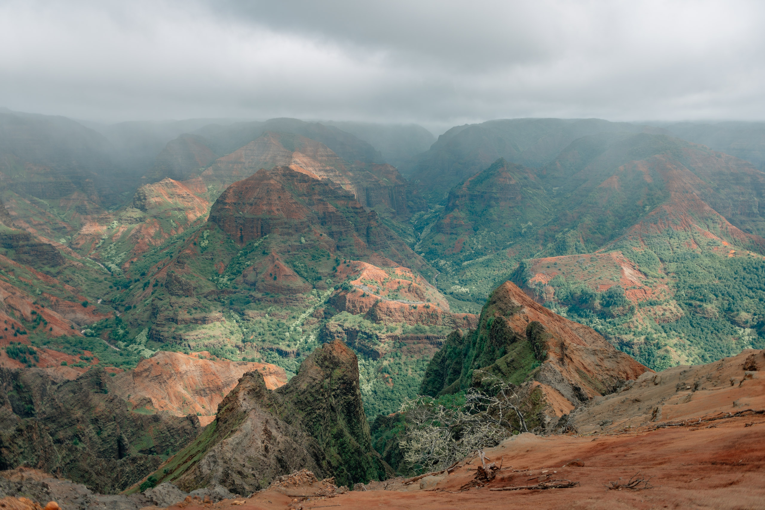 Overlooking Waimea Canyon