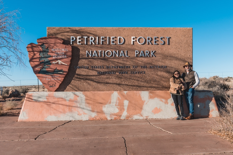 Welcome to the Petrified Forest National Park
